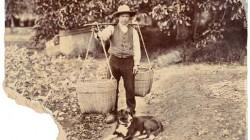 Sing Chow, a market gardener of Akaroa, October 1898